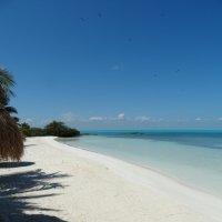 Остров Контой, Мексика :: svk