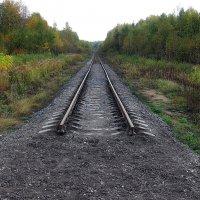 Дорога в никуда :: Николай Белавин
