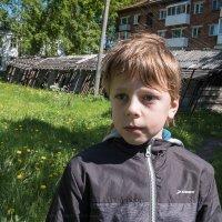 Дети севера :: Майя Жинка