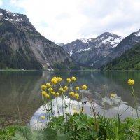 природы вечна красота :: Olga