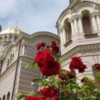 Кафедральный собор :: Tatjana