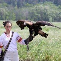 Соколиная охота1 :: Валерий Скобкарёв