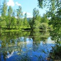 Озеро :: Лариса