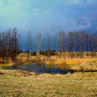 Перед грозой. :: Варвара Высоцкая