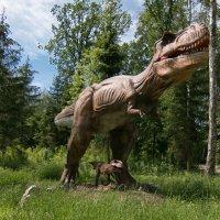 Тираннозавр. :: Геннадий Порохов