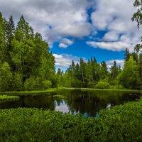 Таёжное озеро :: Георгий Кулаковский
