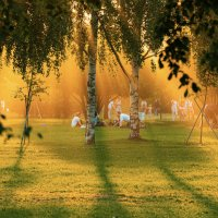 Летний отдых в парке :: Сергей Федоткин