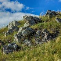 Древние кости земли :: Дмитрий Костоусов
