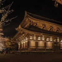 Ночной Киото :: Shapiro Svetlana