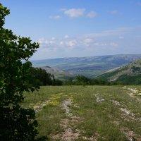 В горах около Алушты :: Наталия Григорьева