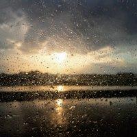 Дождь :: Анна