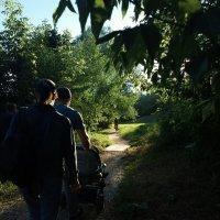 Вечерняя прогулка :: Николай Филоненко