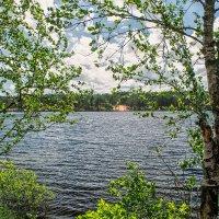 Лето на озере. :: Владимир Филимонов