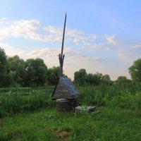 У старого пруда :: marmorozov Морозова