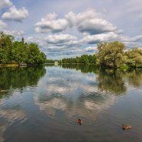 В Гатчинском парке :: Александр Кислицын