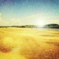 Загадочная Ветлужская земля... :: Андрей Головкин
