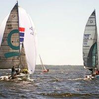 ITL Sailing Cup 2019. Финишная прямая :: Тата Казакова