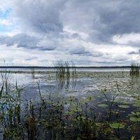 Вечер над озером :: Игорь Пилатович