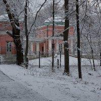 В Кузьминском парке :: Игорь Белоногов