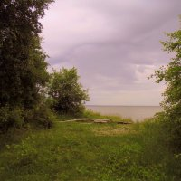 На берегу в пасмурную погоду. :: Мила Бовкун