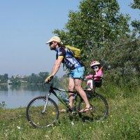 Вело-папа,вело-ляля... :: Владилен Панченко