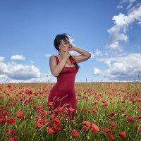 Маки,маки красные маки -вечная память любви... :: Анжелика Маркиза