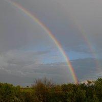 Двойная радуга :: Вера Андреева
