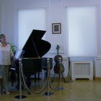Музыкальный салон :: Анна Воробьева
