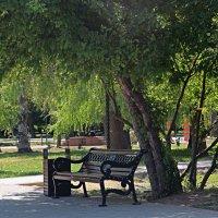 Симферополь,парк Гагарина :: Валентин Семчишин