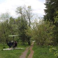 Прогулка по лесопарку :: Олег Афанасьевич Сергеев