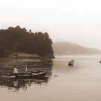 Утренний туман... :: Elena Ророva