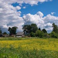 Лето в деревне :: lady v.ekaterina