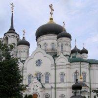 Благовещенский кафедральный собор 2009 :: Анна Воробьева