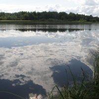 Купающиеся облака. :: Андрей Синицын