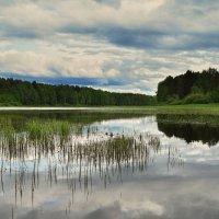 озеро Лебедь-Ты :: Инна *