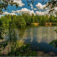 Лесное озеро, июль .... :: Андрей Дворников