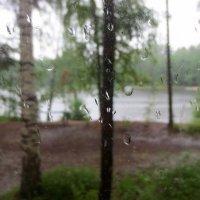 дождливый день :: Елена