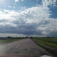 Тучи сгущаются к дождю :: Galina Solovova