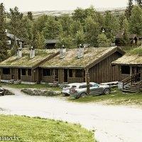 Дворик в Норвегии :: Диана Матисоне