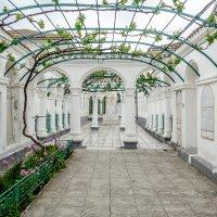 Караимские кенассы, внутренний двор :: Андрей Щетинин