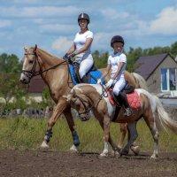 кони-пони :: Елена Логачева