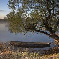 Отплытие откладывается :: Наташа Баранова