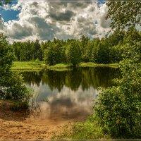 Лесное озеро, июль 5 :: Андрей Дворников