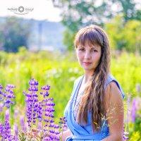 Нежность полевых цветов... :: Владимир Деньгуб