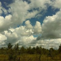 Облачный день :: Геннадий Худолеев