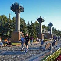 Аллея в парке Победы в Москве :: Александра