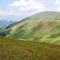 В горах Армении :: Геннадий Мельников