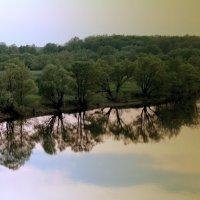 Берег реки Ранова :: Елена Минина