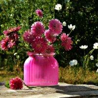 Натюрморт в лиловых тонах... :: ЛЮБОВЬ ВИТТ