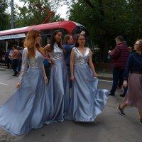 День транспорта :: Сергей Золотавин